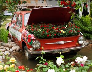 Сады_и_цветы_14